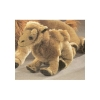 Bactrian Camel Plush 7.5""